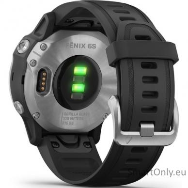Išmanusis laikrodis Garmin Fenix 6S Silver Black 6