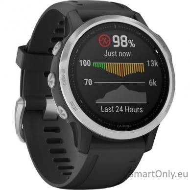 Išmanusis laikrodis Garmin Fenix 6S Silver Black 3