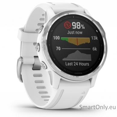 Išmanusis laikrodis Garmin Fenix 6S Silver White 3