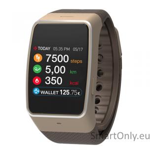 Išmanusis laikrodis MyKronoz Smartwatch ZeWatch 4 HR (Ruda/auksinė)