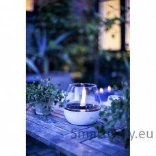 Ekologiška žvakė Tenderflame Tulip Raw